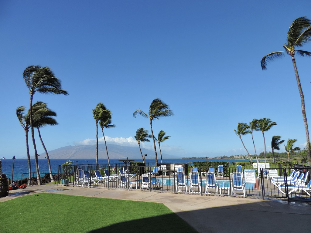 Kihei Surfside Unit 111 Oceanfront View